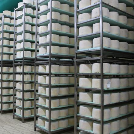 camere di stagionatura del gorgonzola